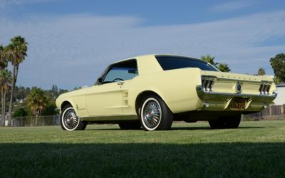 1967 Mustang USA    Best Unrestored Mustang in the WORLD!